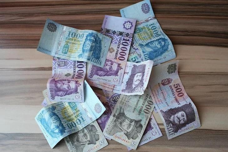 Money Amulet vélemények, fórum, hozzászólások
