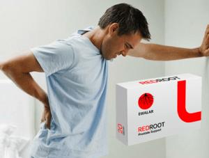 Red Root kapszulák, összetevők, hogyan kell bevenni, hogyan működik , mellékhatások